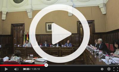 Ver vídeo del Pleno Ordinario del 4 de mayo de 2017