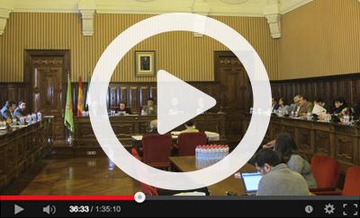 Ver vídeo del Pleno Ordinario del 31 de enero de 2018