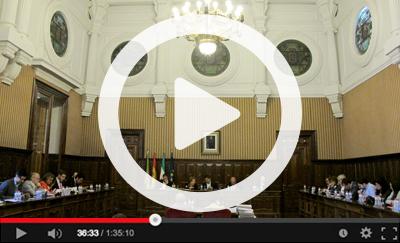 Ver vídeo del Pleno Ordinario del 2 de mayo de 2018