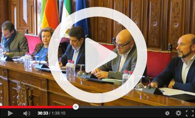 Ver vídeo del Pleno Ordinario del 1 de febrero de 2019