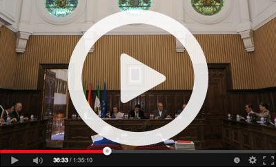 Ver vídeo del Pleno Ordinario del 27 de febrero de 2019