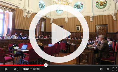 Ver vídeo del Pleno Ordinario del 28 de marzo de 2019