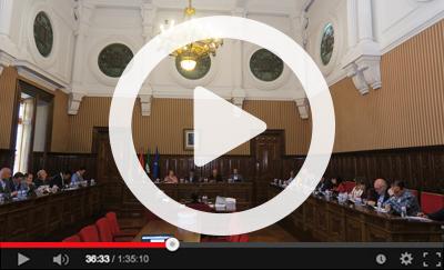 Ver vídeo del Pleno Ordinario del 30 de abril de 2019