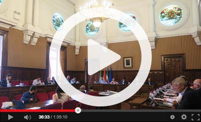 Ver vídeo del Pleno Ordinario del 24 de mayo de 2019