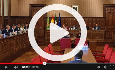 Ver vídeo del Pleno Extraordinario del 8 de julio de 2019