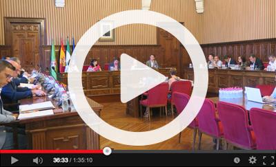 Ver vídeo del Pleno Ordinario del 30 de julio de 2019