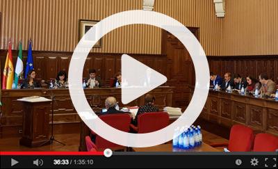 Ver vídeo del Pleno Ordinario del 27 de noviembre de 2019