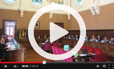 Ver vídeo del Pleno Ordinario del 30 de enero de 2020