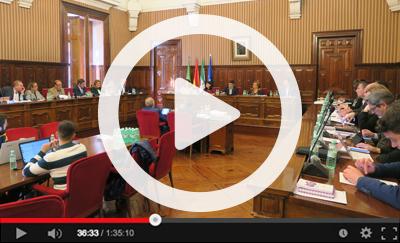 Ver vídeo del Pleno Ordinario del 2 de marzo de 2020